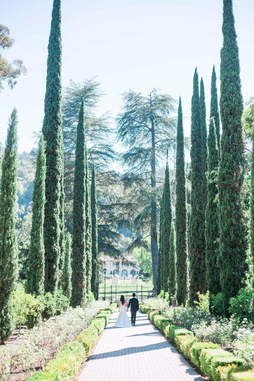 JBJ Pictures - Wedding Photographer San Francisco - Napa - Sonoma - SF Engagement Photos (19).jpg