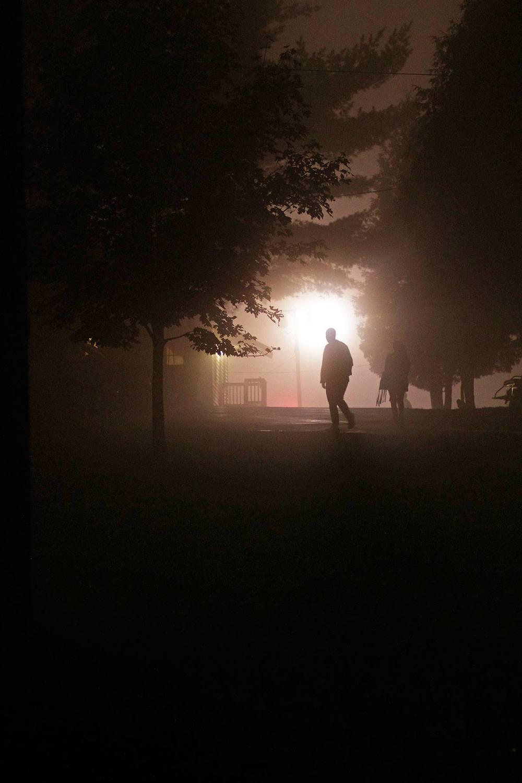 fog path luis.jpg