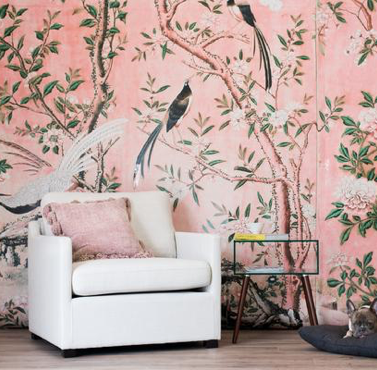Ane Wallpaper