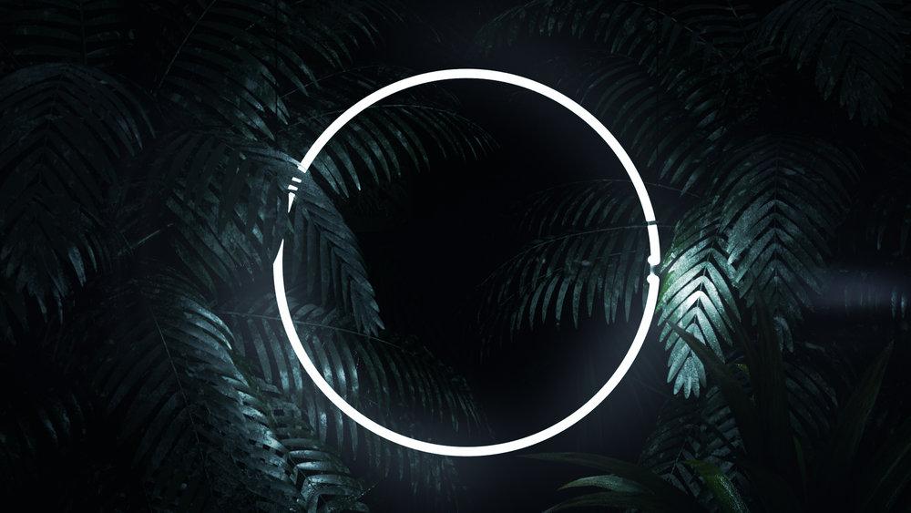 neon_02.jpg