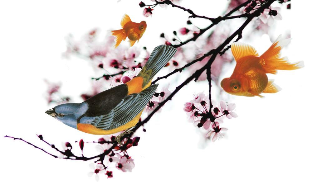 Spring_no_txt.jpg