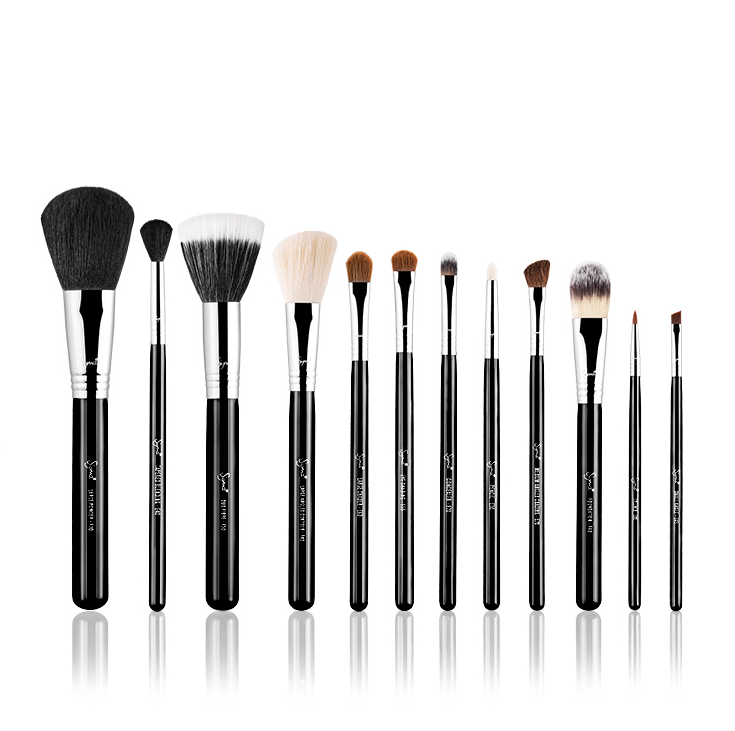 Sigma Essential Brushes
