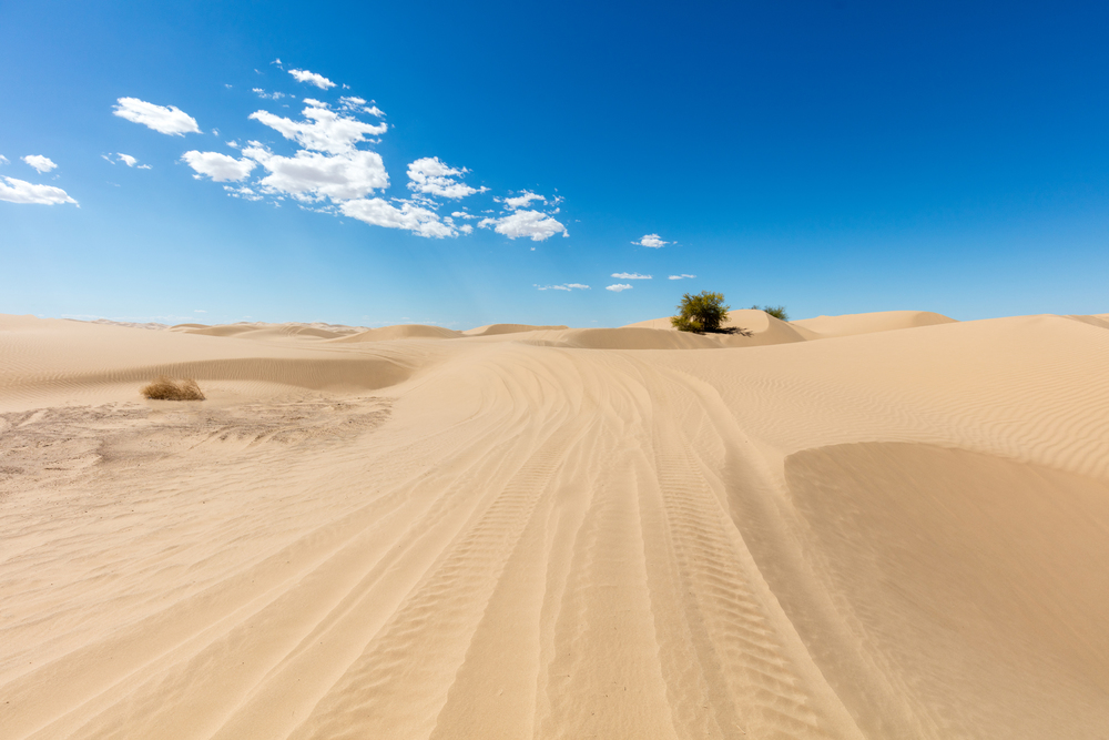 The sand is 300 feet deep in some places, with some pretty steep hills and valleys. You have to be careful where you drive.