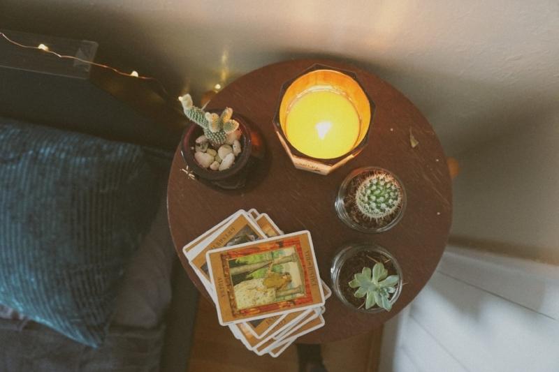 Nelida room tarot cactus.jpg