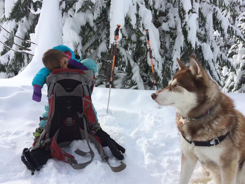 Skiing is hard work!