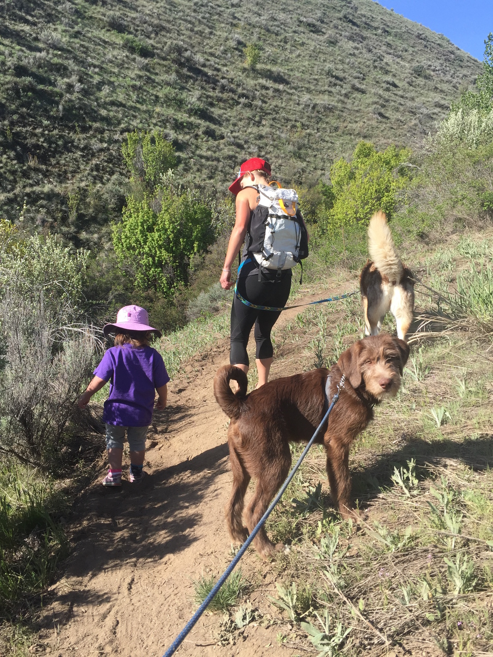 Fi takes a hike with Ashley, Theo, or Nikki and the uphill