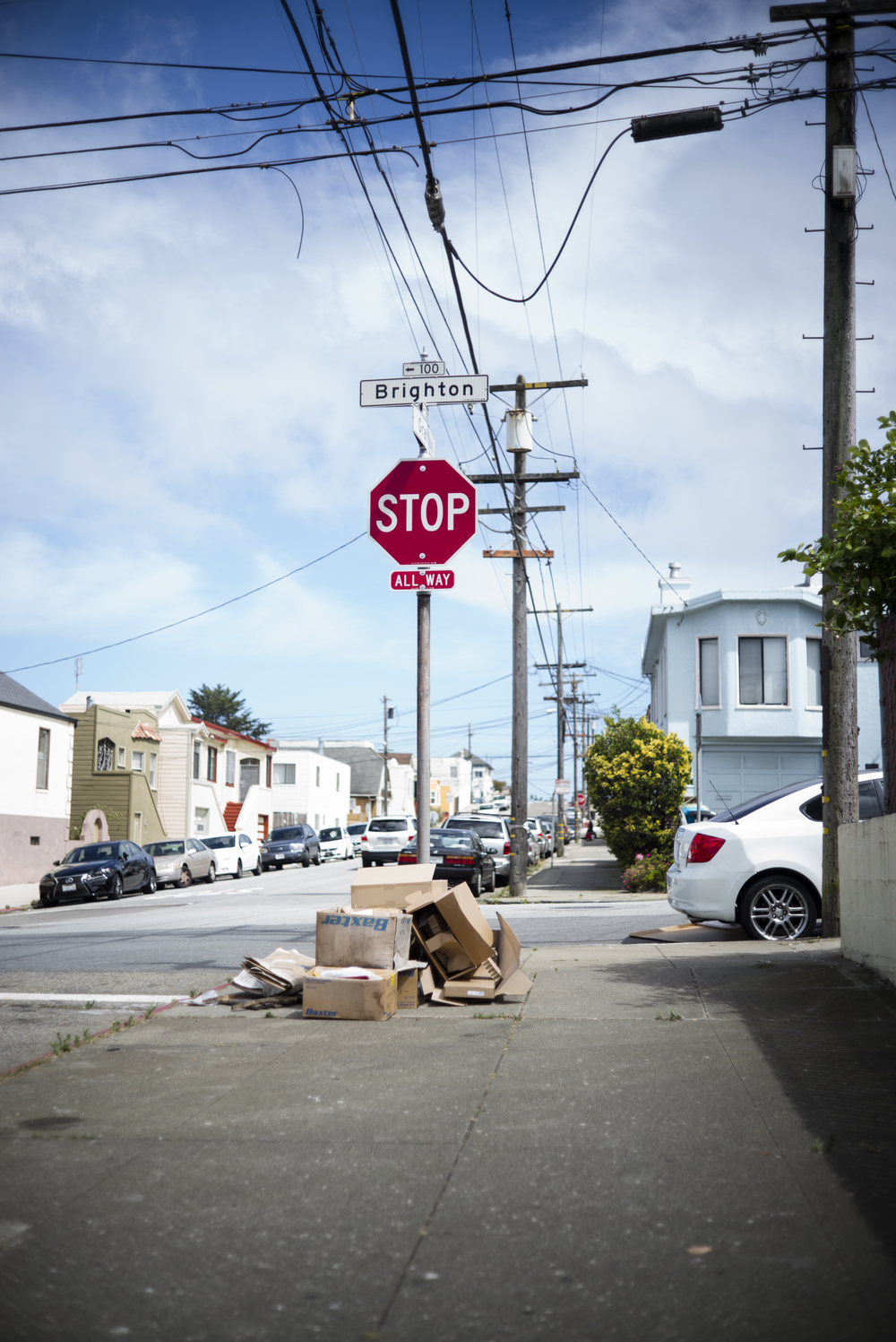 L1006365 stop trash overgrown.jpg