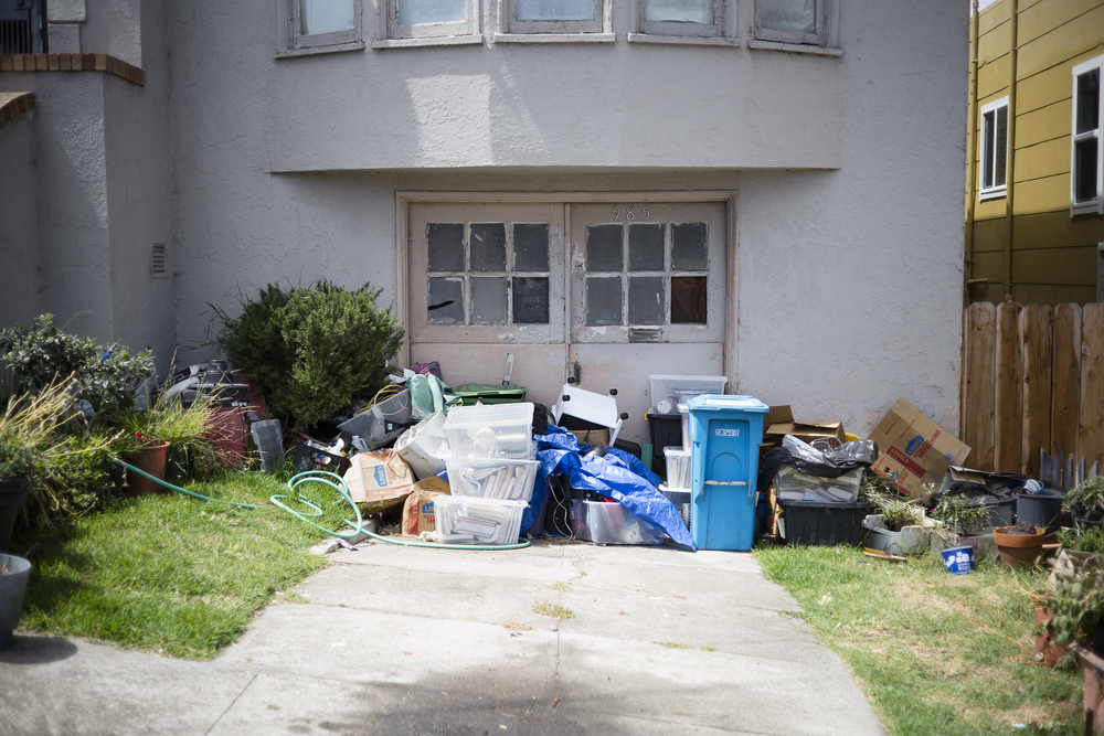 L1006309 overgrown trash wall.jpg