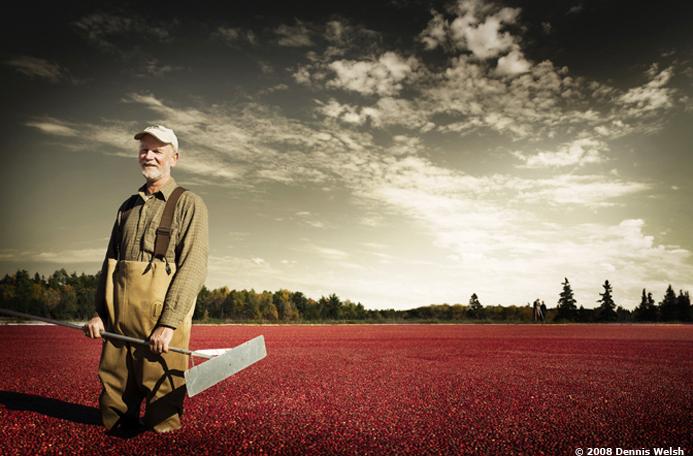 welsh-cranberrymain.jpg