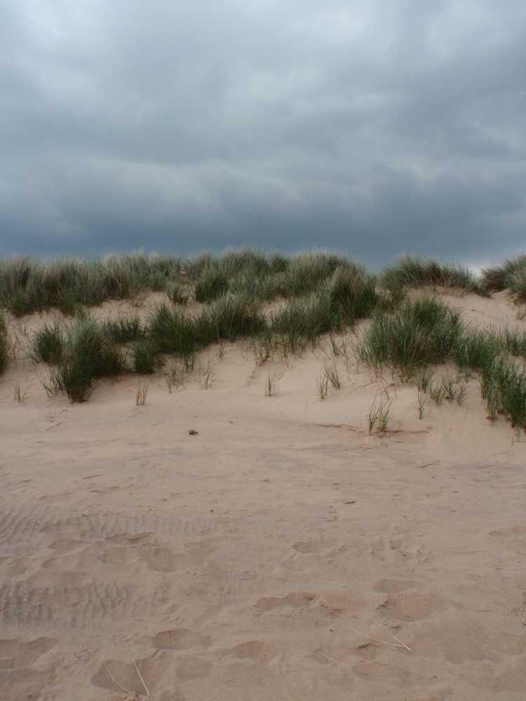 Dunes at Burnham