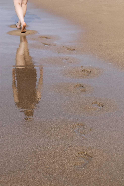 Viv_footprints_.jpg