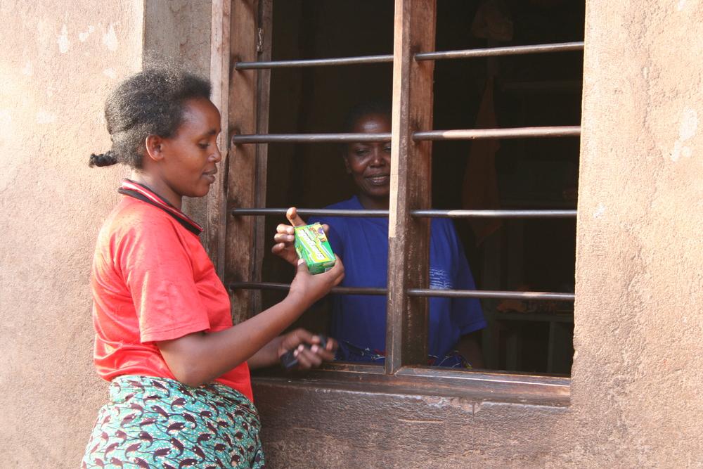 Livingstone Tanzania Trust  microloans scheme