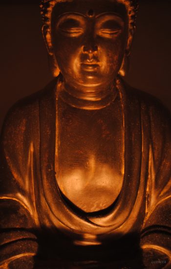 Photography by Anthony A. Cernera (Seriously, I have a lot of Buddha statues.)