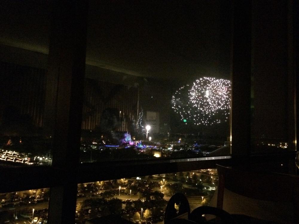 The view of the fireworks from our table!