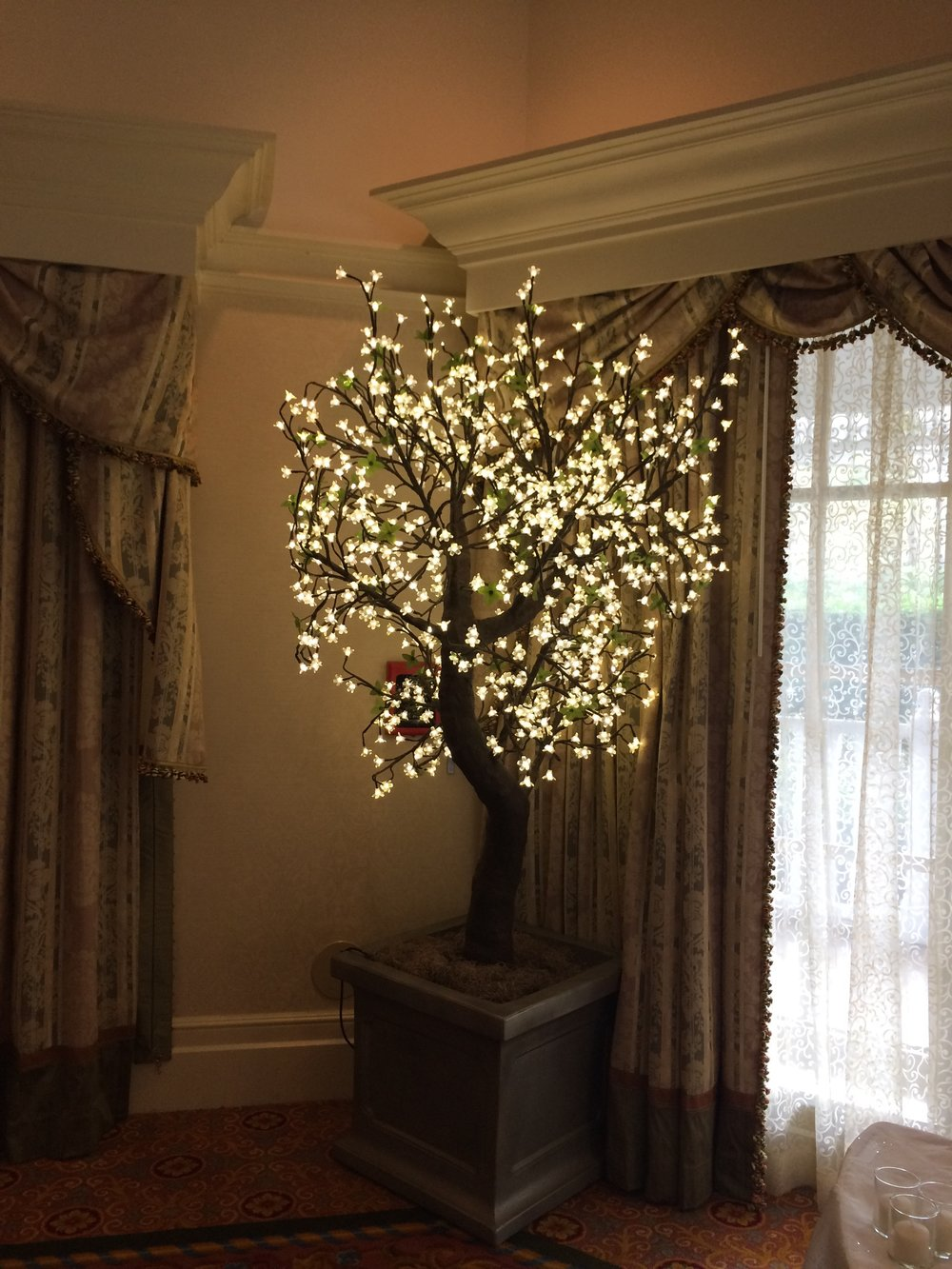 Also, sign me up for one of these twinkle trees! So pretty!