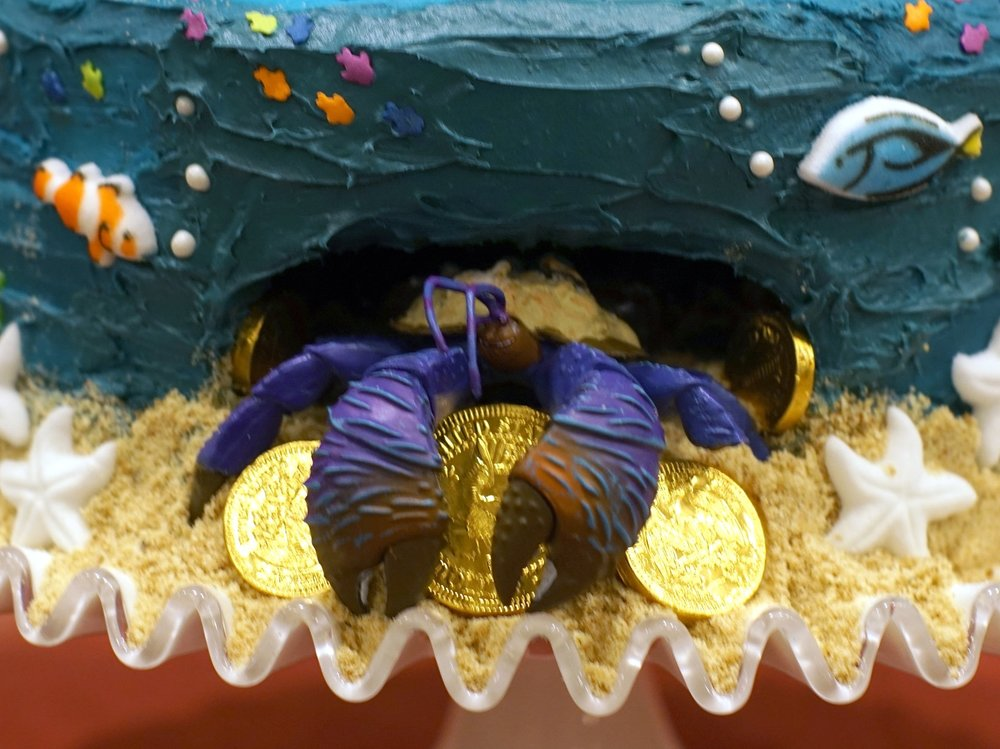 The Exciting Unveiling Of Party Was Evas Big Present Which Actually A Very Small HERMIT CRAB Course Named Tamatoa