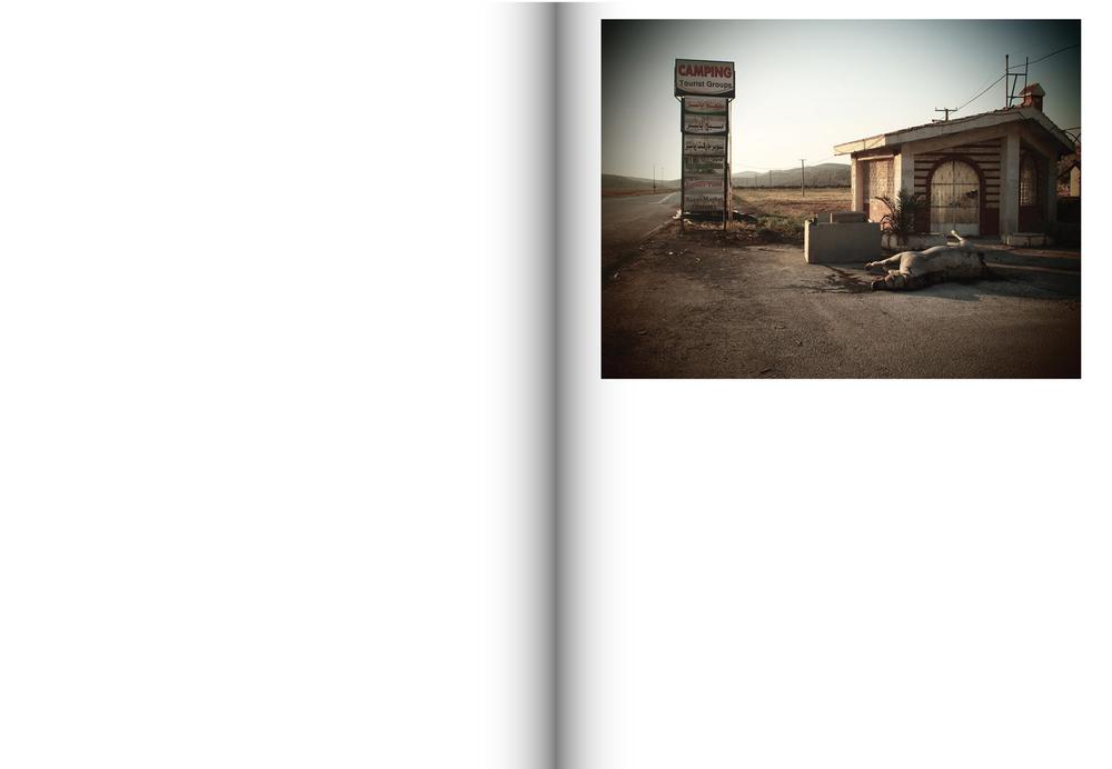 Souvenirs de Syrie, Emeric Lhuisset40.jpg
