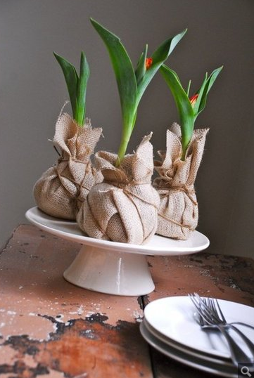 spring_bulbs-resized-600.png