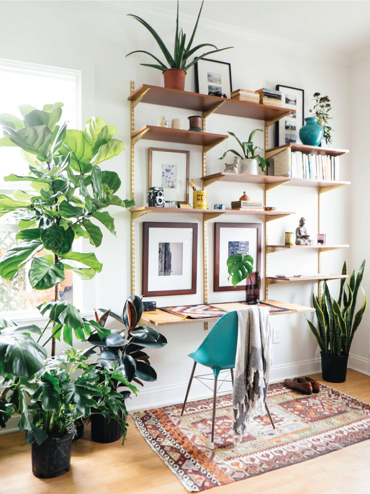 Love the design trend of using plants in your home or office