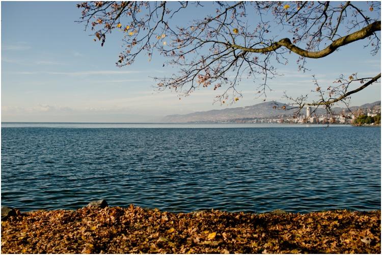 Geneva18.jpg