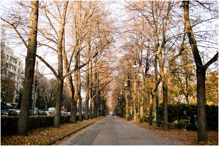 Turin9.jpg