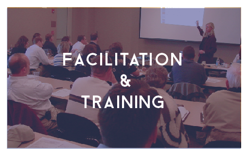 facilitation and training