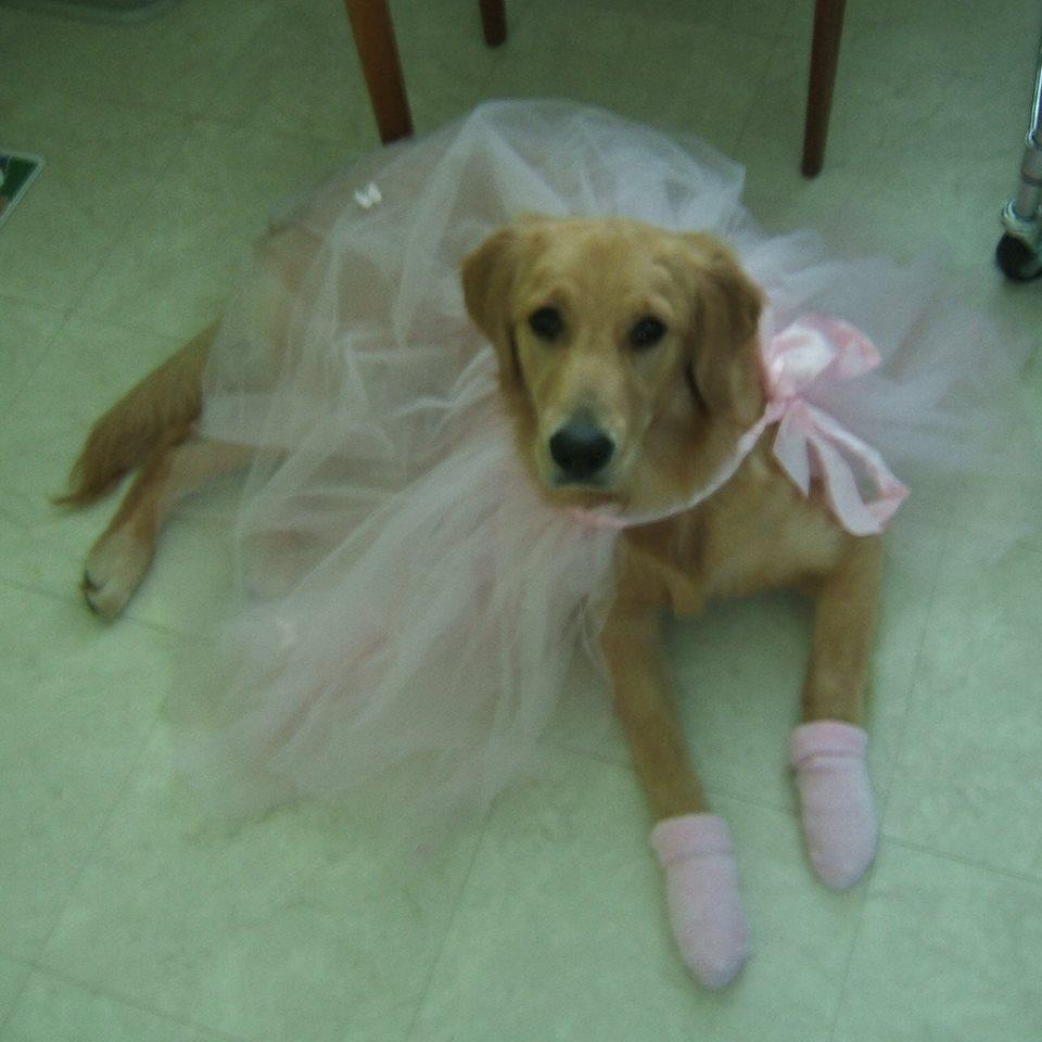 baby ballerina.jpg