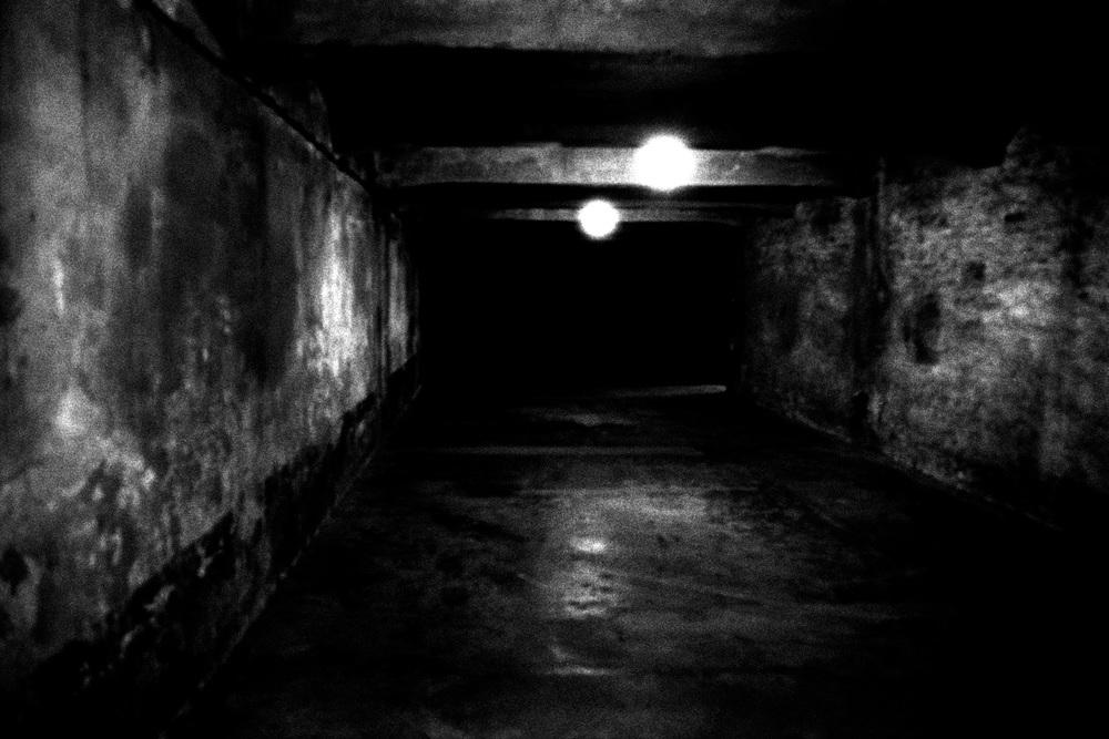 17-Gas-Chamber-Auschwitz-Poland.jpg