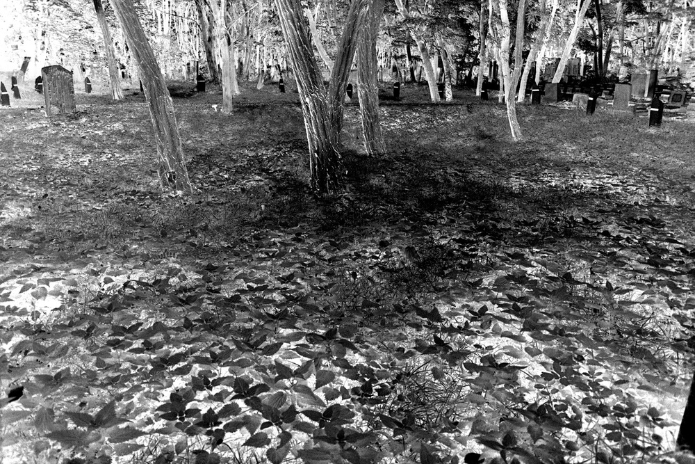 36-Mass-Grave-Jewish-Cemetery-Warsaw.jpg