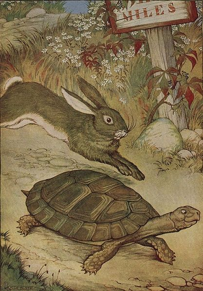 Tortoise and Hare.   Source . - superbalancedlife.com
