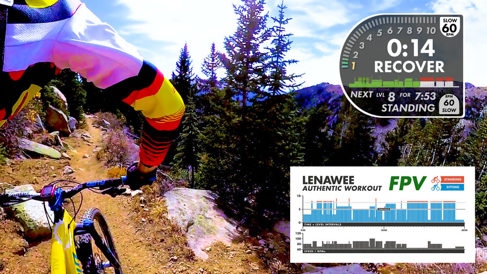 Lenawee FPV AUTHENTIC W-Infographic.jpg