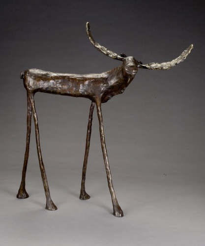 """Moose 58"""""""