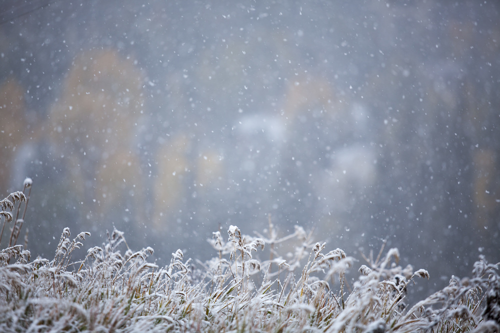 snow_flakes_village.jpg