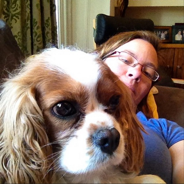 Couch selfie with grumpy Cavalier