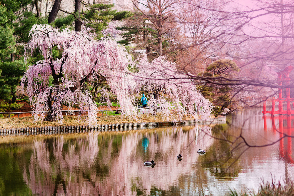 NIKE_Spring_INSTA.jpg