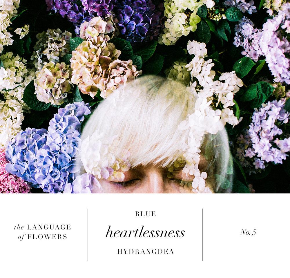 fleur5 copy.jpg