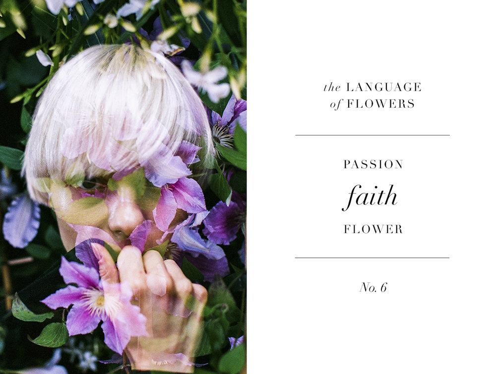 fleur6 copy.jpg