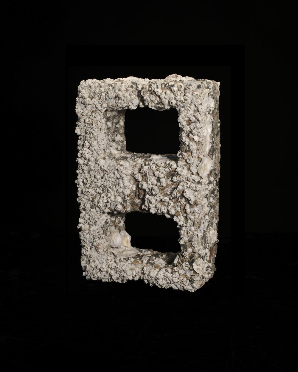 Barnacled Cinder Block