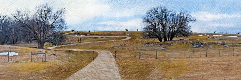 pasture trail