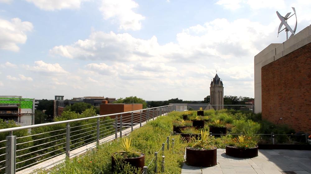 Vcu Pollak Roof Garden O Shea Wilson Siteworks