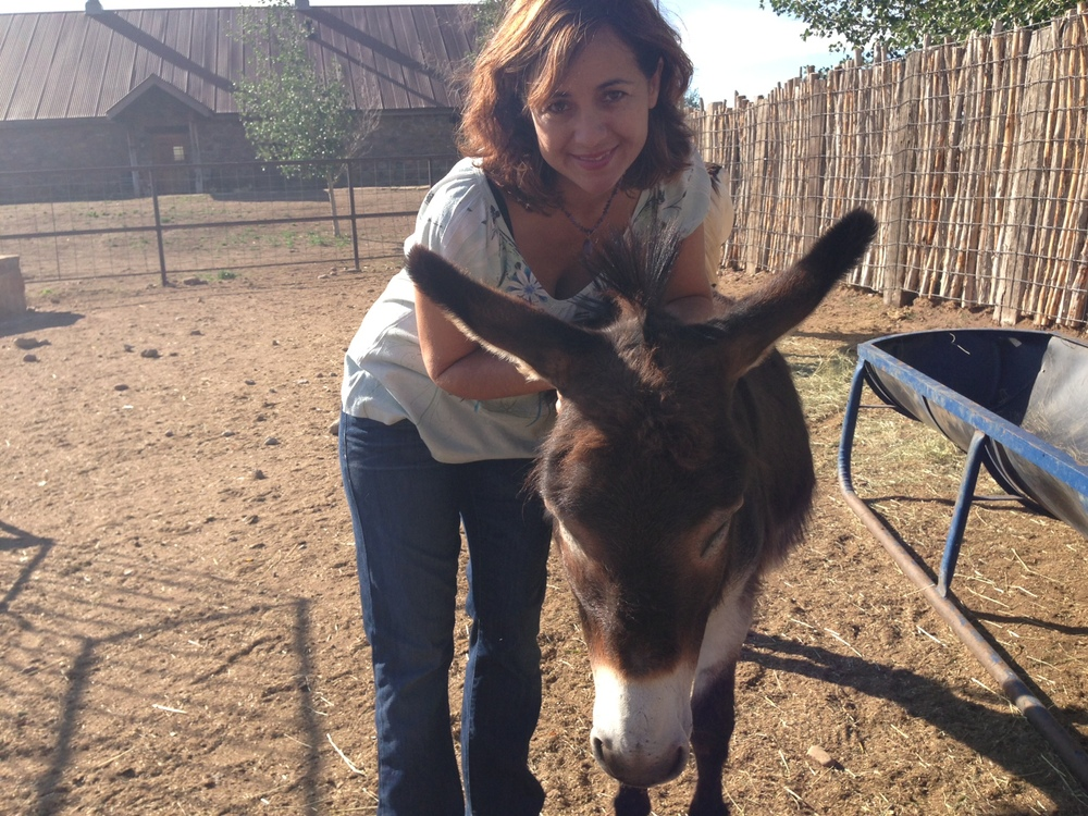At Storm Ranch in Las Vegas, New Mexico with Pistol the donkey. Hee, Haw!
