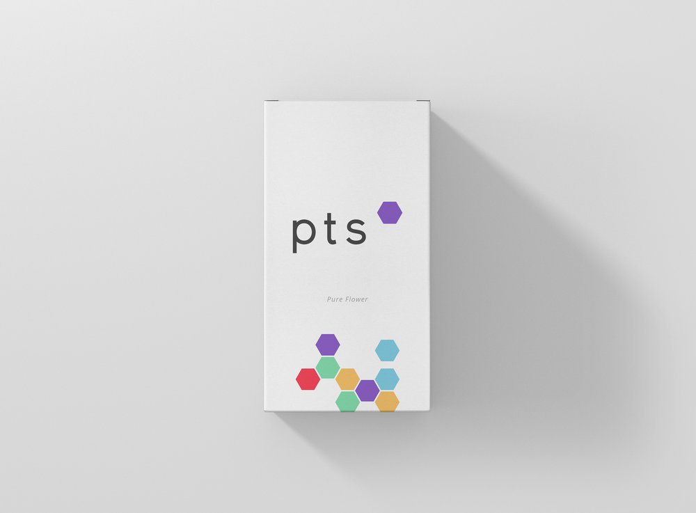 progressive treatment solutions / branding and packaging