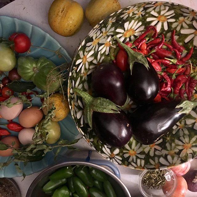 We grow more than just lovely herbs on our farm. #farmlife #biodynamic #foodporn #organicallygrown #slowfood #farmtotable #sungrown ................👨🏽🌾👩🏼🍳🌶🍆🥒🌰🍅🐓