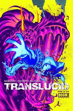 Translucid-5-Cover-300x455.jpg