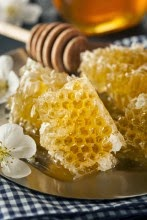 Honey+Comb.jpg
