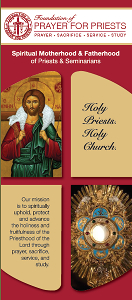 informational trifold brochure for promo (Dioceses, Groups, members)
