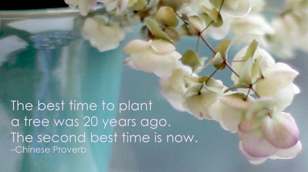 Do it now. #devinecolor #chineseproverb #impressyourself