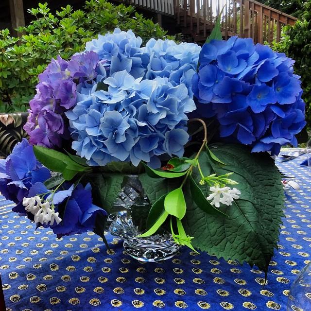 Hydrangeas #purple #summer #devinecolor #impressyourself