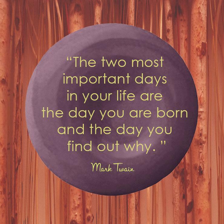 Devine Color Wisdom - Mark Twain