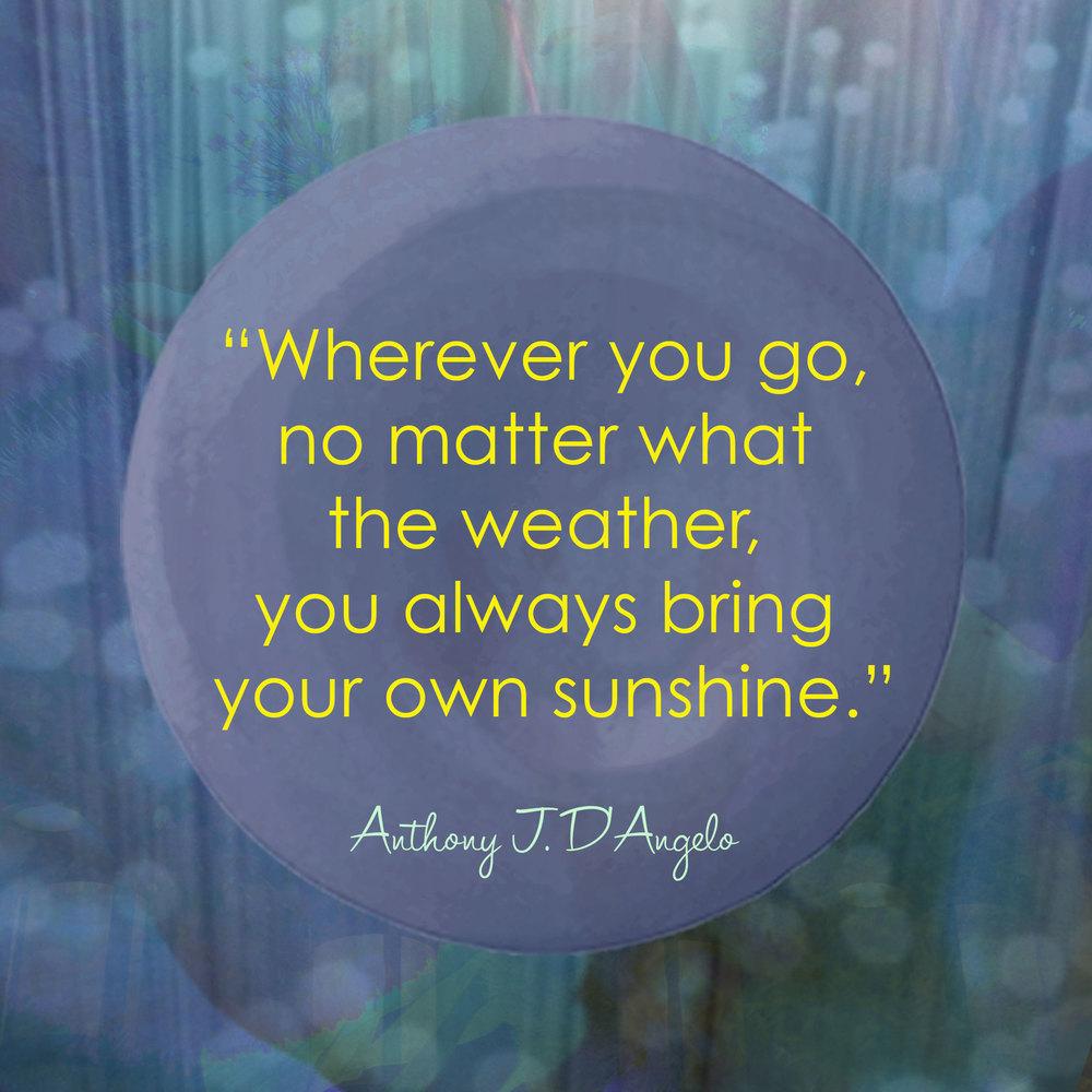 Devine Color Wisdom - Anthony D'Angelo